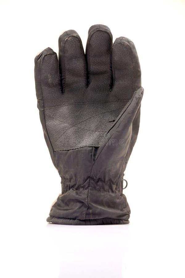 rękawiczkowa skóra zdjęcia royalty free