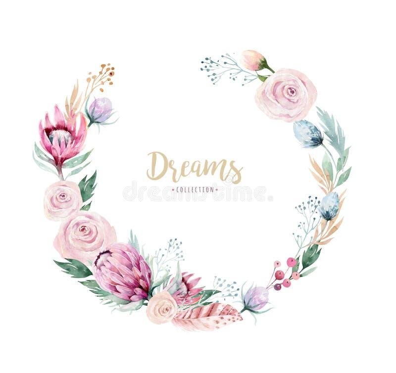 Ręki akwareli rysunek odizolowywająca kwiecista ilustracja z protea różą, opuszcza, rozgałęzia się i kwitnie, Artystyczny złoto ilustracji