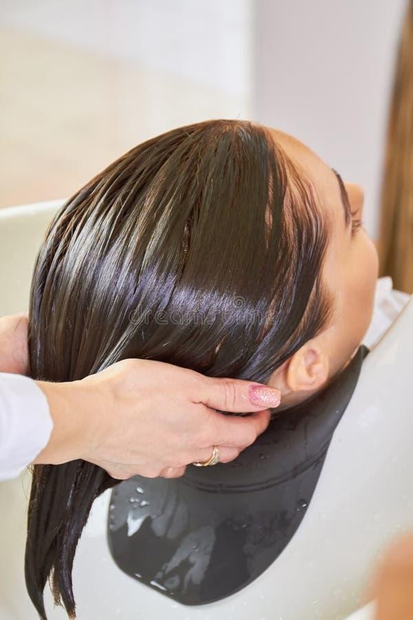Ręki beautician, mokry włosy zdjęcia royalty free