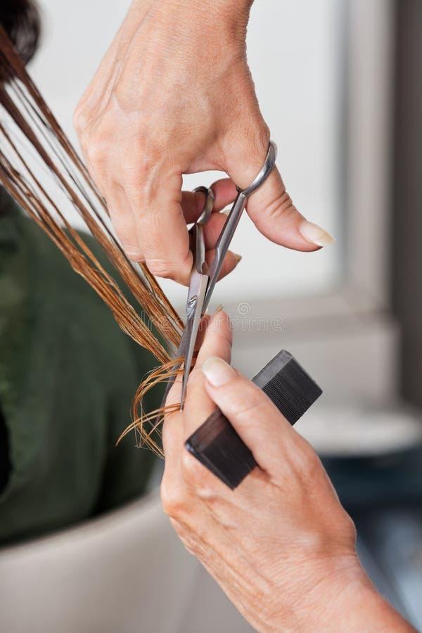 Ręki Ciie Mokrego włosy W salonie obrazy stock