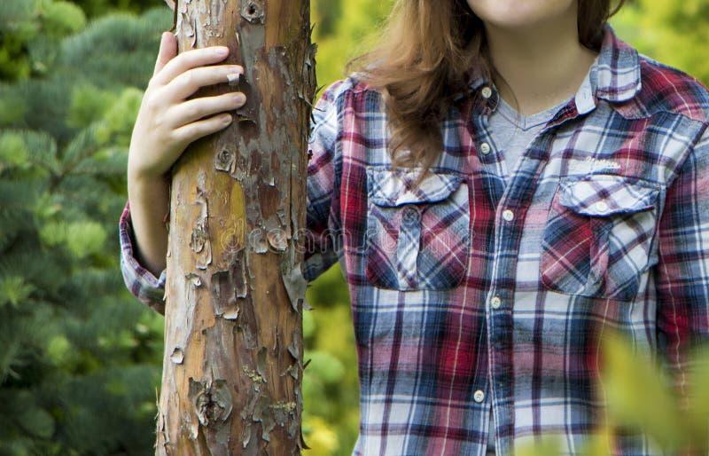 Ręki dotykają drzewa obraz stock