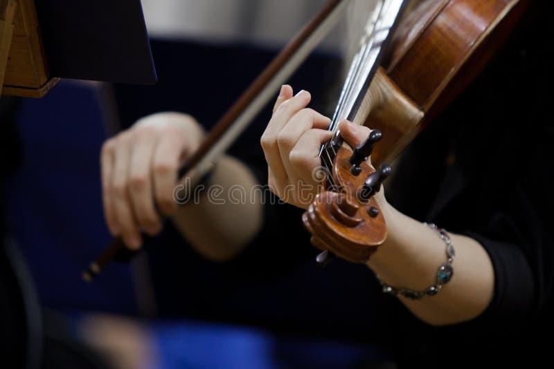 Ręki dziewczyna bawić się skrzypce zdjęcia royalty free