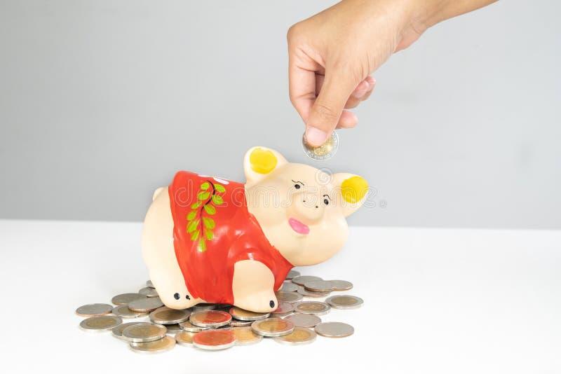 Ręki kładzenia moneta w Pomarańczowego prosiątko banka oszczędzania pieniądze z monetami wypiętrza obraz stock
