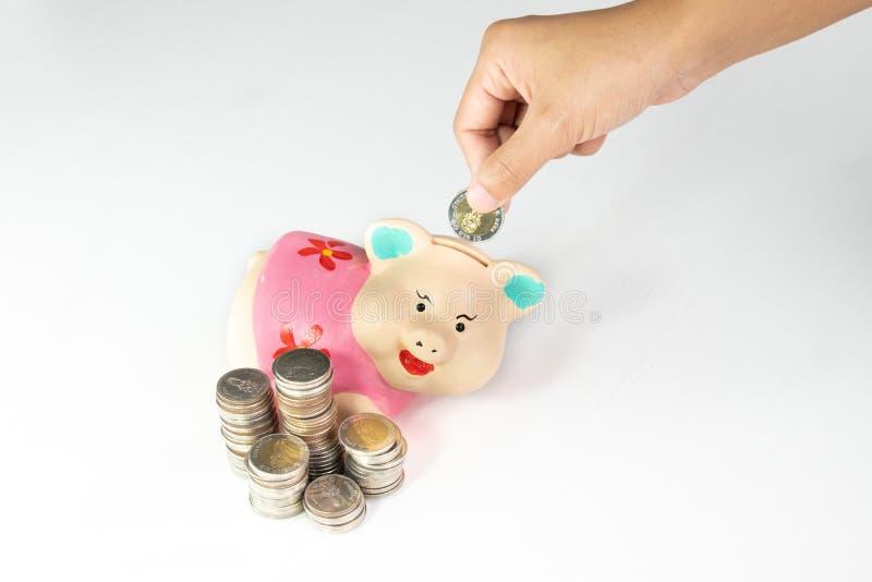Ręki kładzenia moneta w Różowego prosiątko banka z monetami wypiętrza obraz royalty free
