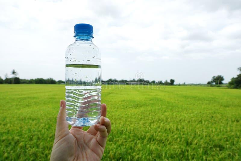 Ręki mienia świeżej wody butelka na zielonym polu uprawnym z niebem zdjęcie stock