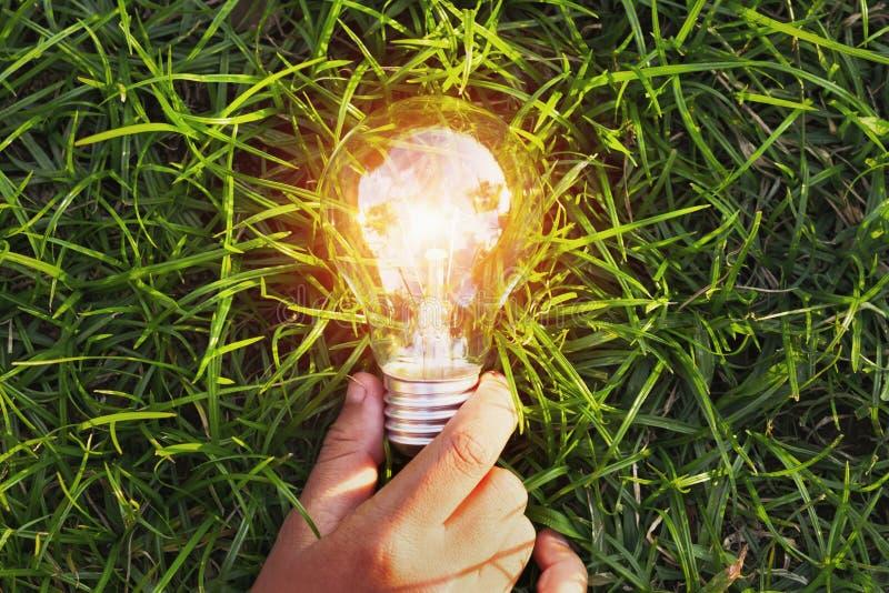 ręki mienia żarówka na trawie eco pojęcia władzy energia w na zdjęcia royalty free