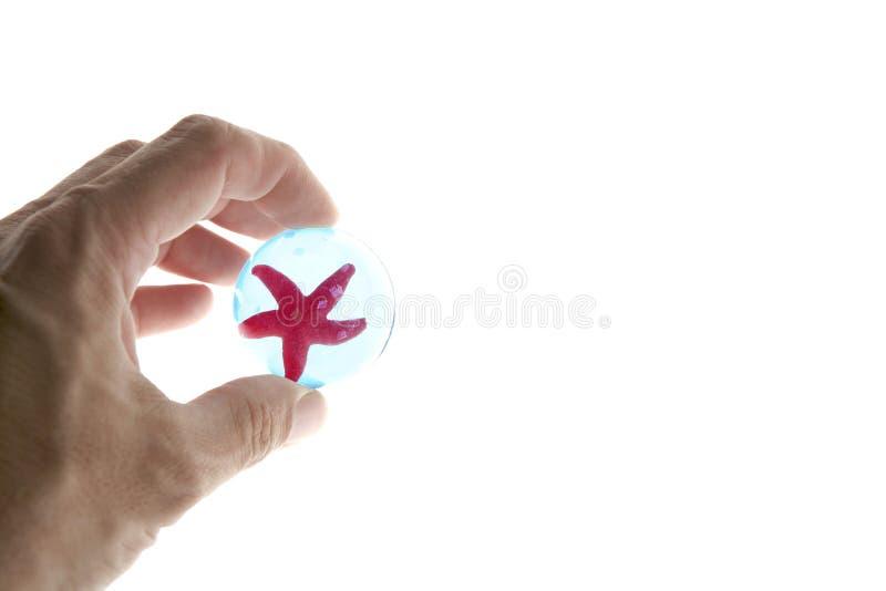 ręki mienia istoty ludzkiej rozgwiazda zdjęcie royalty free