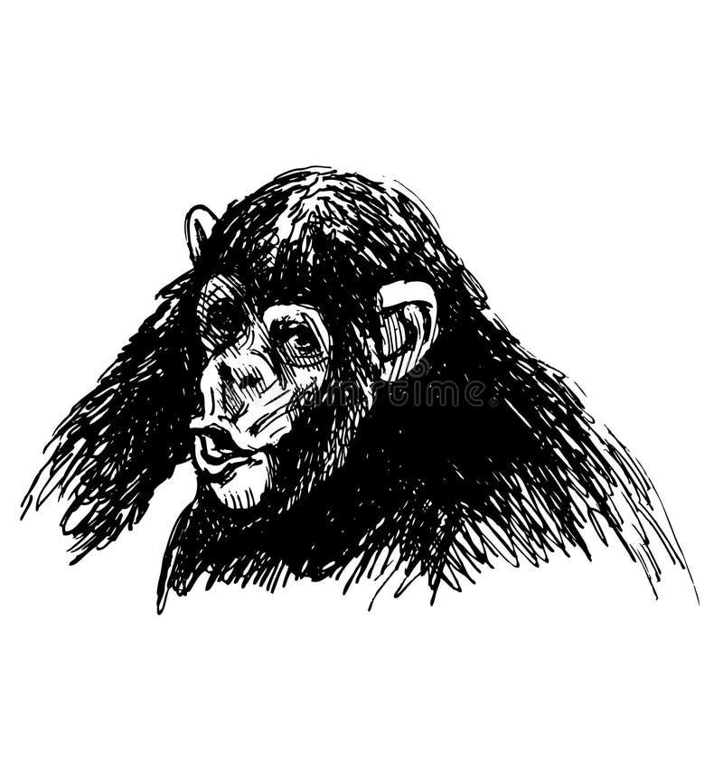Ręki nakreślenie młody szympans ilustracji