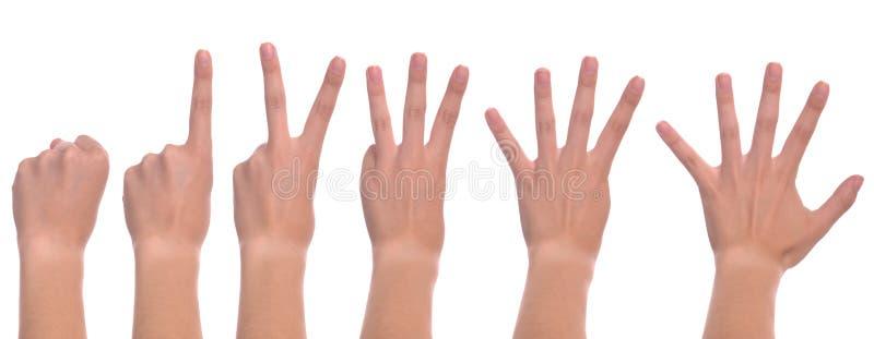 ręki odliczająca kobieta obraz royalty free