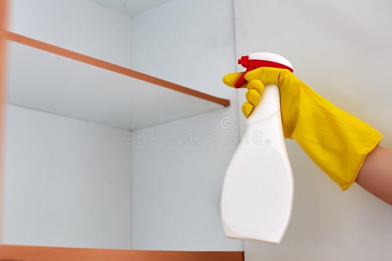 Ręki opryskiwania pestycyd na karakanie w domu fotografia stock