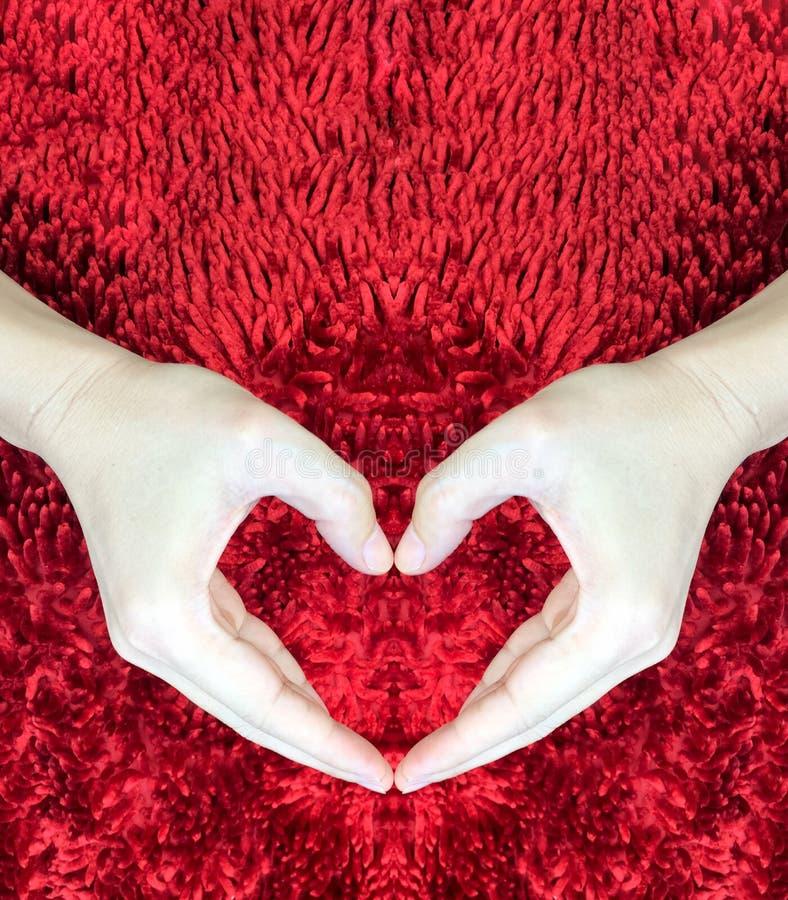 Ręki robi sercu na czerwonym puszystym tle Walentynki ` s dnia pojęcie pocałunek miłości człowieka koncepcja kobieta pokój zdjęcie stock