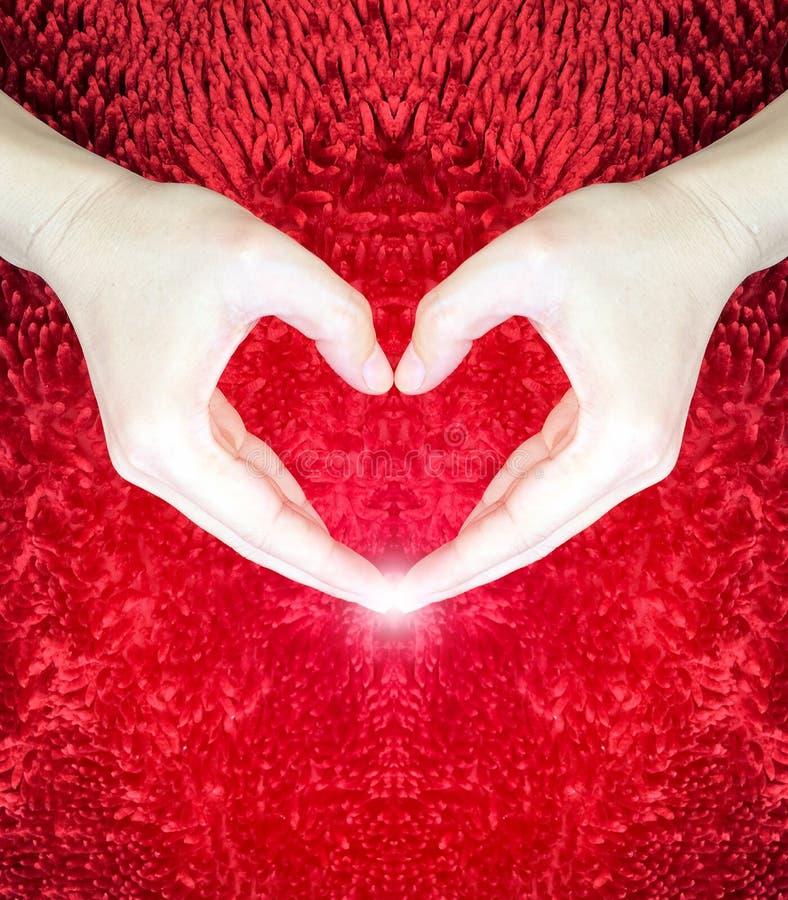 Ręki robi sercu na czerwonym puszystym tle Walentynki ` s dnia pojęcie pocałunek miłości człowieka koncepcja kobieta pokój zdjęcia stock