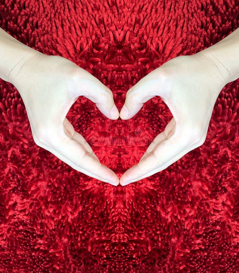 Ręki robi sercu na czerwonym puszystym tle Walentynki ` s dnia pojęcie pocałunek miłości człowieka koncepcja kobieta pokój obraz royalty free