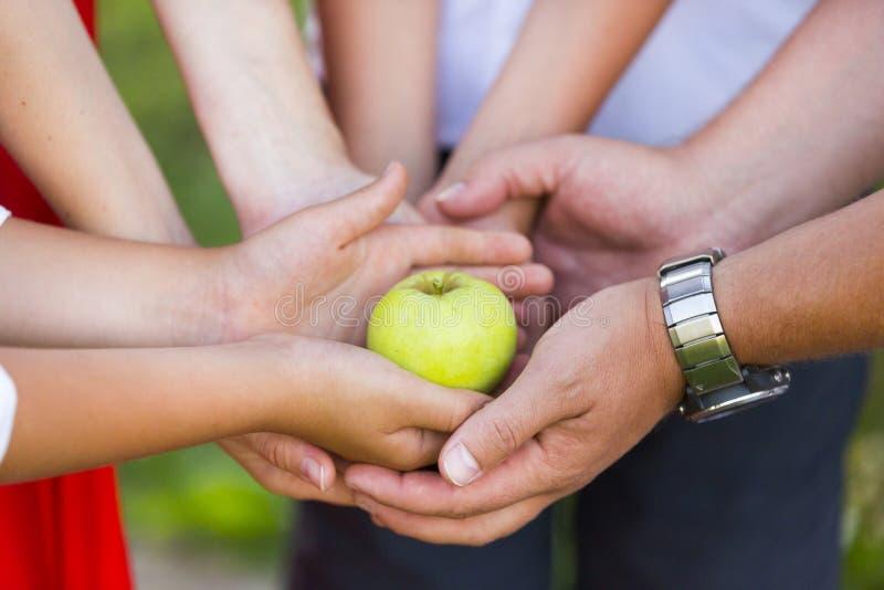 Ręki rodzina składająca się z czterech osób z zielonym jabłkiem zdjęcie royalty free