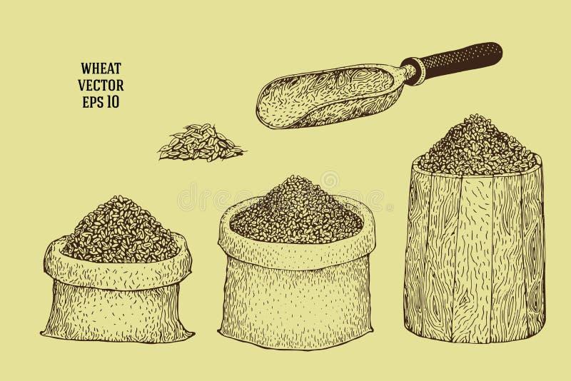 Ręki rysować ilustracje z banatką groszkują w workach i baryłkach ilustracja wektor