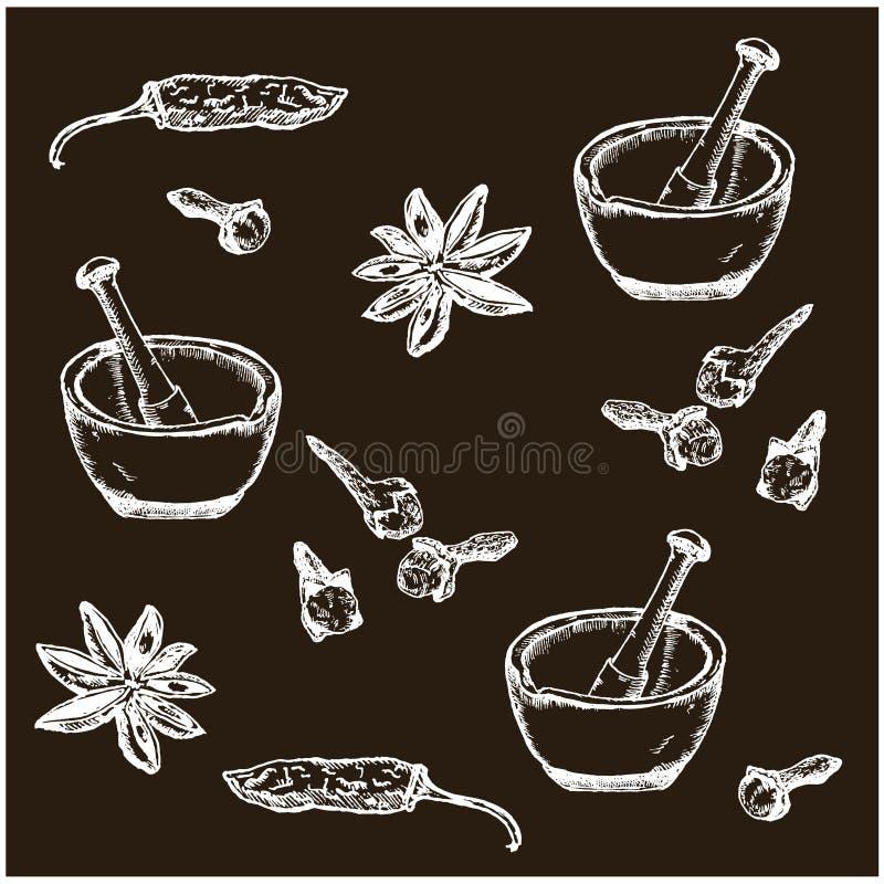 Ręki rysować nakreślenie pikantność ustawiają czerń na bielu Gorący pieprz, kardamonowy, cynamon i cloves Pikantność wektoru wzór ilustracja wektor