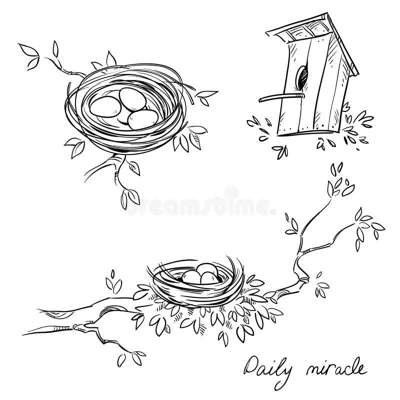 Ręki rysujący gniazdeczka i birdhouse, kreskowy rysunek royalty ilustracja