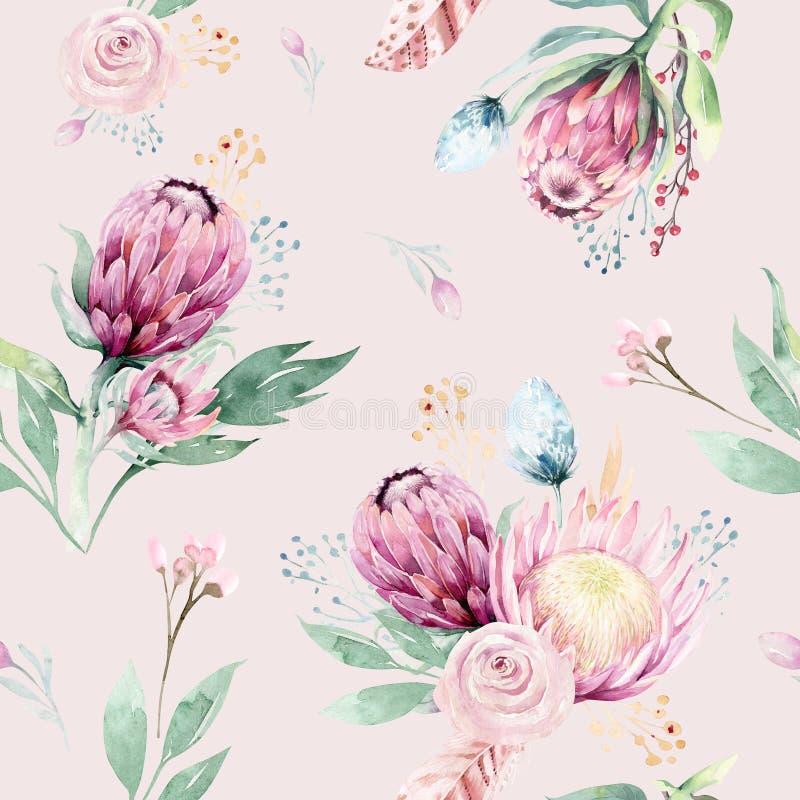 Ręki rysunkowej akwareli kwiecisty wzór z protea różą, opuszcza, rozgałęzia się i kwitnie, Artystyczne bezszwowe złoto menchie ilustracji