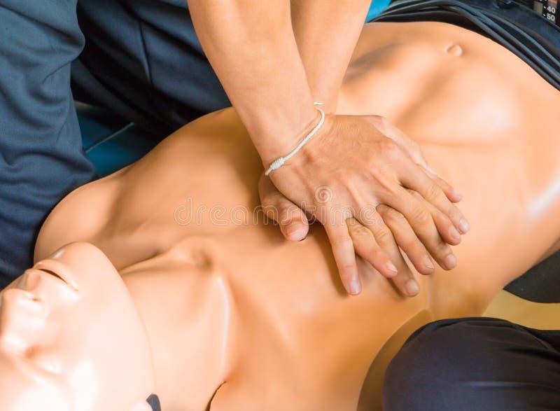 Ręki serca pompa z medyczną atrapą na CPR, w przeciwawaryjnym refresher szkoleniu asysta lekarz obrazy royalty free