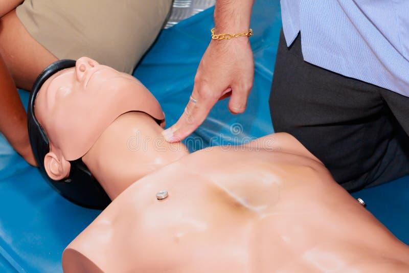 Ręki serca studencka pompa z medyczną atrapą na CPR, w przeciwawaryjnym refresher szkoleniu asysta lekarz fotografia royalty free