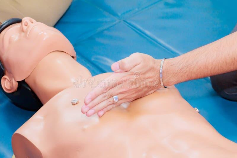 Ręki serca studencka pompa z medyczną atrapą na CPR, w przeciwawaryjnym refresher szkoleniu asysta lekarz zdjęcie stock