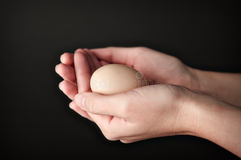 2 ręki Tworzy puchar kształtują z Brown jajkiem w nim zdjęcie royalty free