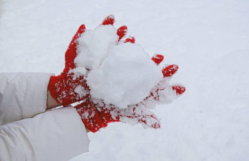 Ręki ubierali w czerwienie dziać rękawiczkach trzymają śnieżną garść zdjęcie stock
