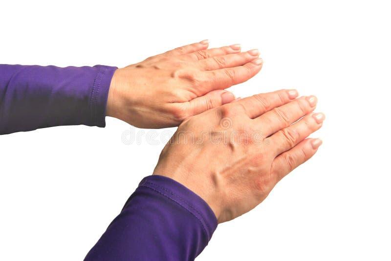 Ręki w średnim wieku kobieta z palmami zestrzelają Mockup na odosobnionym tle Szablonu zbliżenie z kopii przestrzenią Perspektywi zdjęcie royalty free