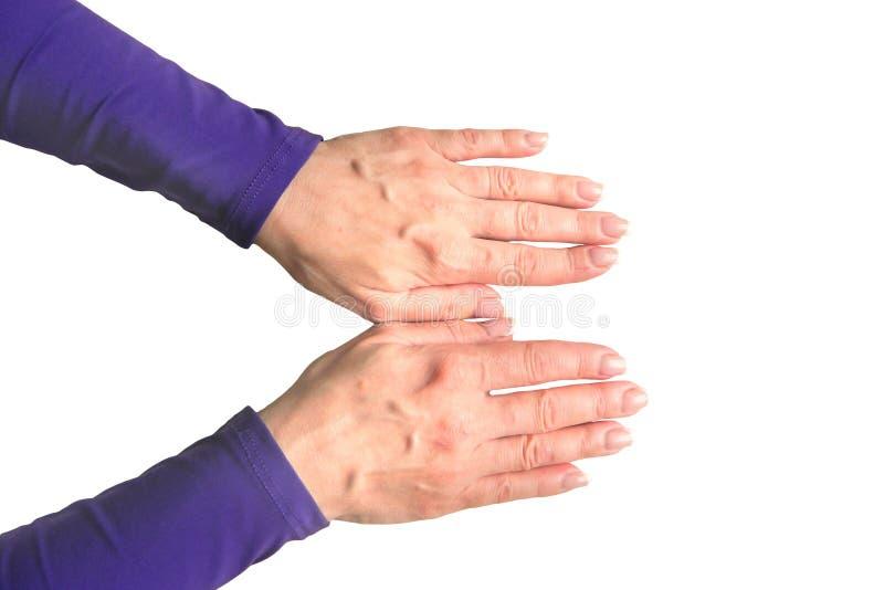 Ręki w średnim wieku kobieta z palmami zestrzelają Mockup na odosobnionym tle Szablonu zbliżenie z kopii przestrzenią Odg?rny wid fotografia stock