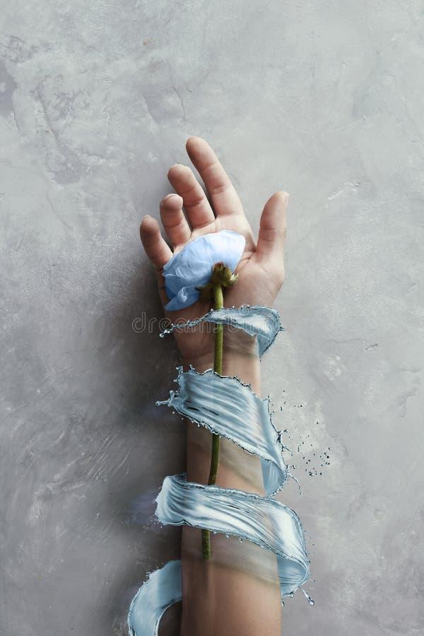 Ręki z kwiatami z pluśnięcie błękitne wody w kamiennym szarym tle zdjęcie royalty free