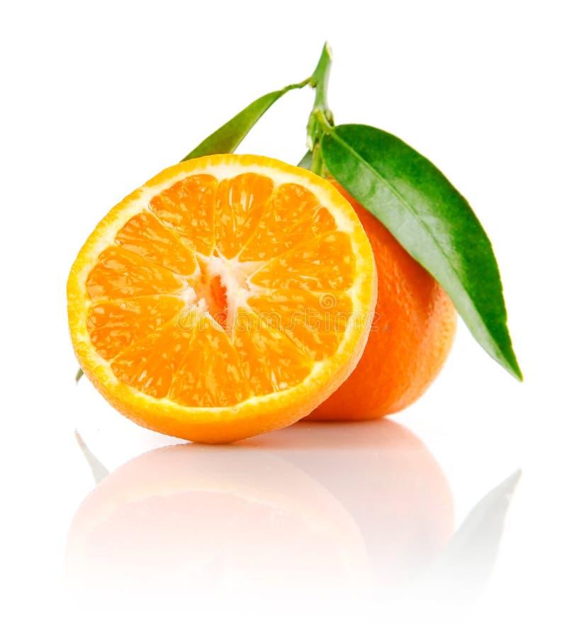 rżnięta świeżej owoc zieleń opuszczać mandarine zdjęcie royalty free
