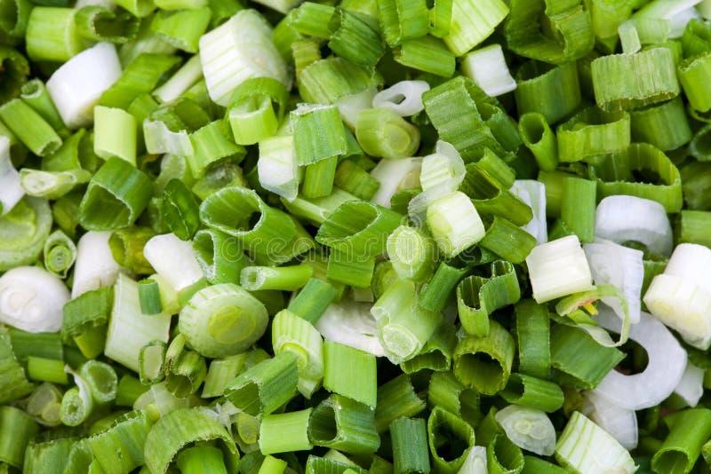 Rżnięta zielona cebula zdjęcie stock