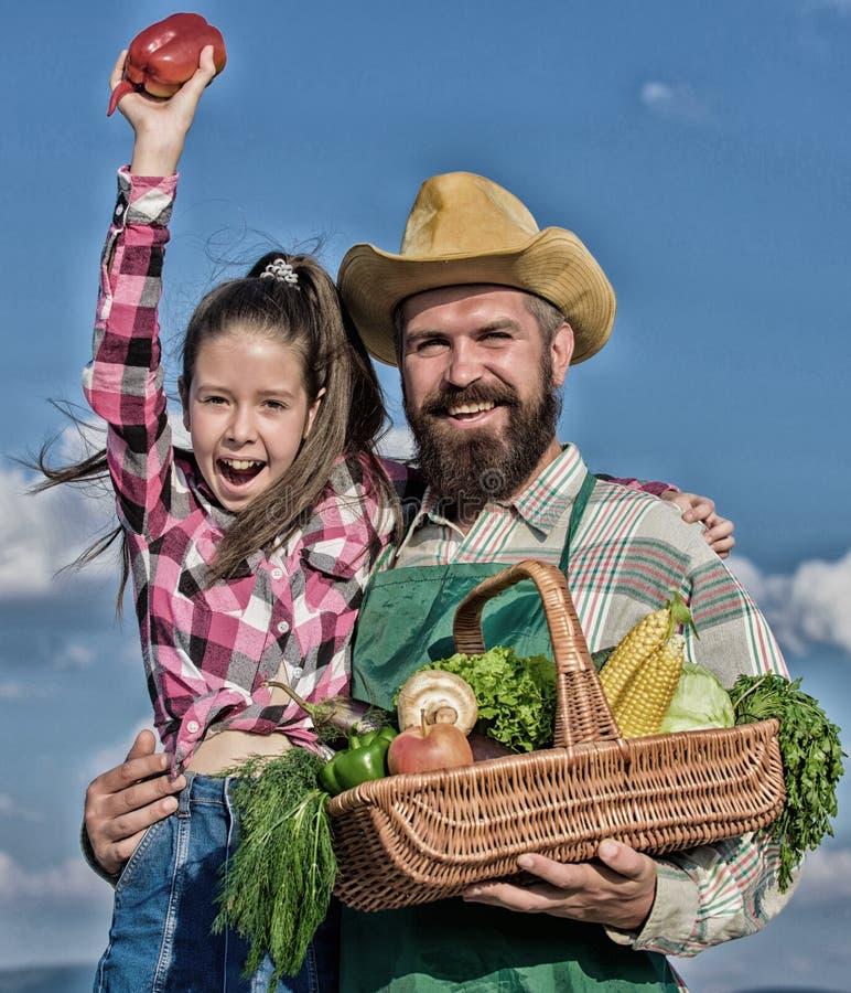 r Γενειοφόρος αγροτικός αγρότης ατόμων με το παιδί Οργανική και φρέσκια συγκομιδή οικογενειακών homegrown συγκομιδών της Farmer μ στοκ εικόνες