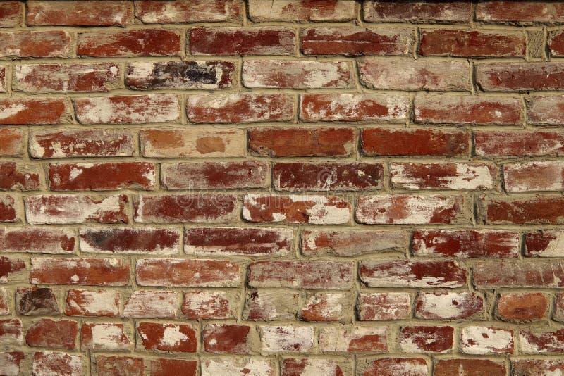 r Η σύσταση του τοίχου τούβλινου στοκ εικόνα
