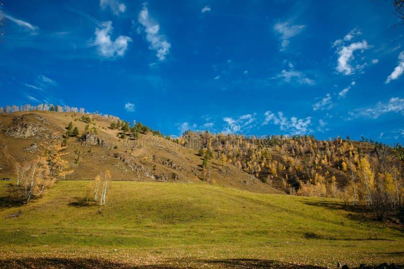 r Λόφοι και λιβάδια στον ήλιο, μπλε ουρανός με τα ελαφριά άσπρα σύννεφα Πρώιμο φθινόπωρο στα βουνά στοκ εικόνα