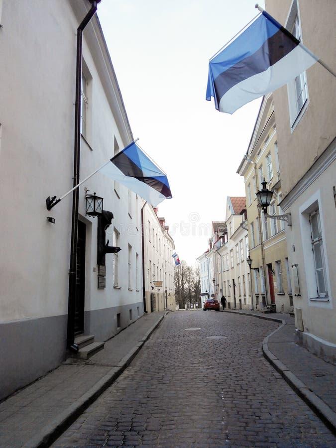 r Οι εσθονικές σημαίες είναι στην πρόσοψη ενός κτηρίου Οδός Historyan στοκ εικόνες με δικαίωμα ελεύθερης χρήσης