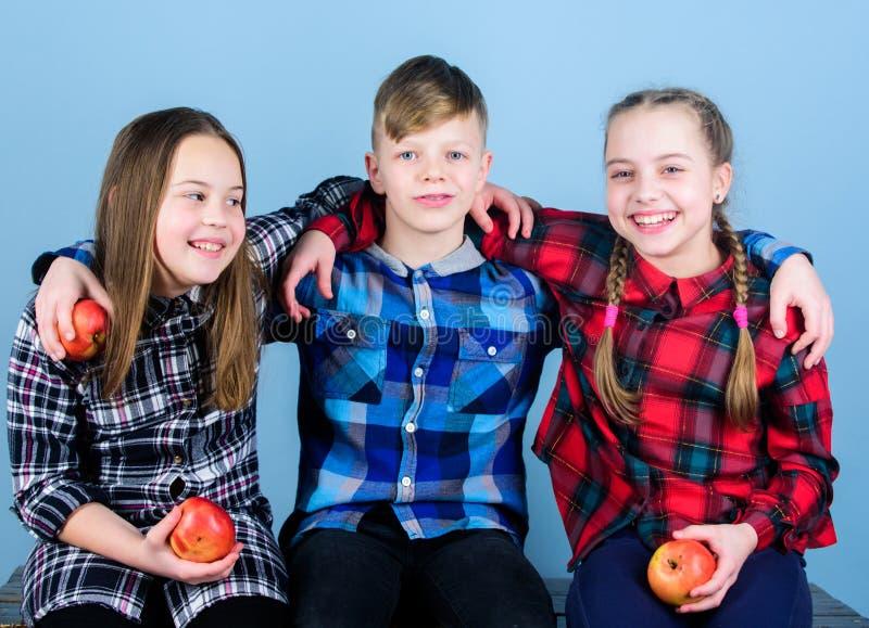 r Οι φίλοι αγοριών και κοριτσιών σε παρόμοια ελεγμένα ενδύματα τρώνε το μήλο t : στοκ εικόνα
