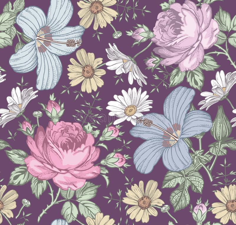 r Ρεαλιστικά απομονωμένα λουλούδια r Το Chamomile αυξήθηκε hibiscus mallow wildflowers στοκ φωτογραφία με δικαίωμα ελεύθερης χρήσης