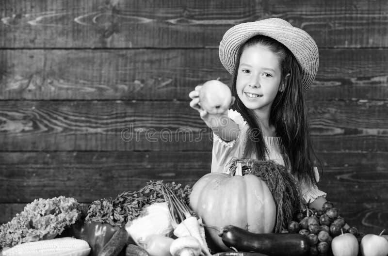 r Деятельности при фермы для детей Традиционный осенний ребенок фестиваля празднует сбор Ребенк девушки стоковое изображение rf