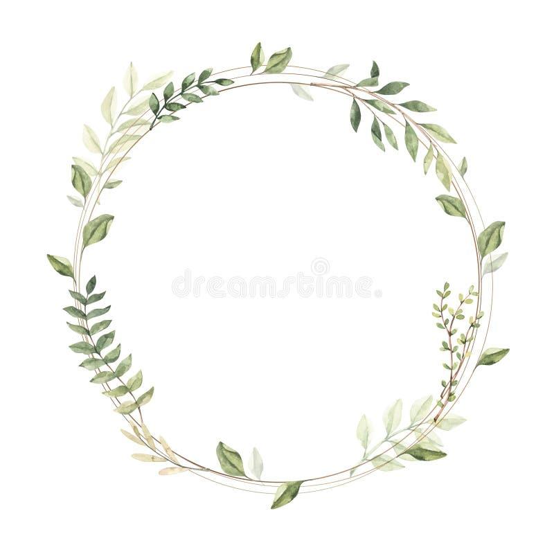 r Рамка золота круга с ботаническими ветвями и листьями greenery Элементы флористического дизайна иллюстрация вектора