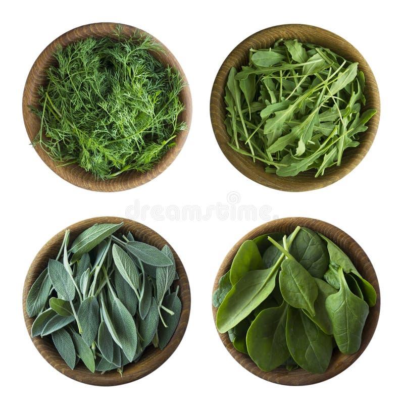 r Свежий зеленые салат и травы изолированные на белой предпосылке Листья шалфея, arugula, шпината, укропа в деревянном шаре стоковое изображение rf