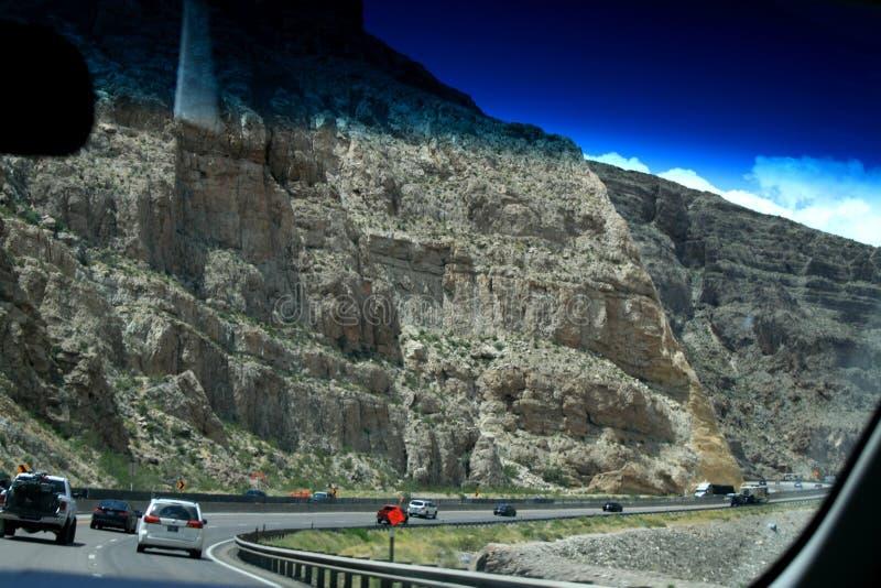 r Серые горы Невада и завод пустыни стоковое изображение