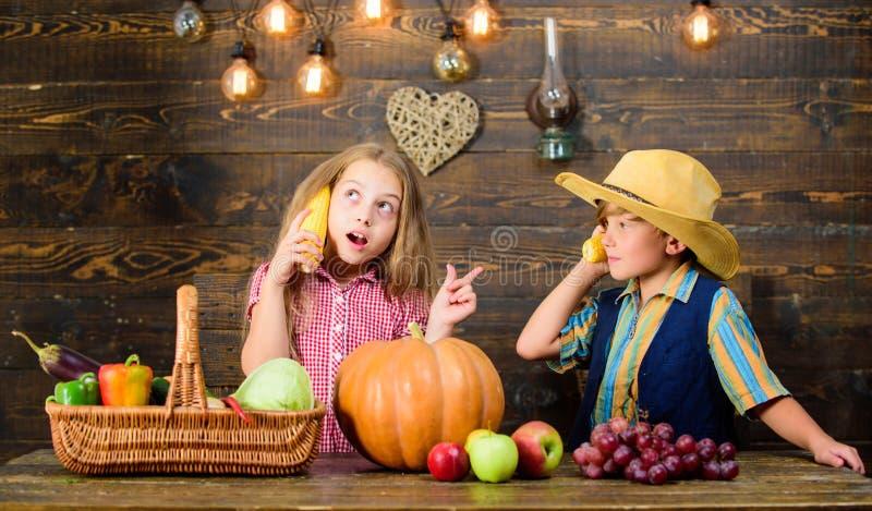 r Ферма семьи Причины почему каждый ребенок должен испытать обрабатывать землю Придержанный стоковая фотография rf