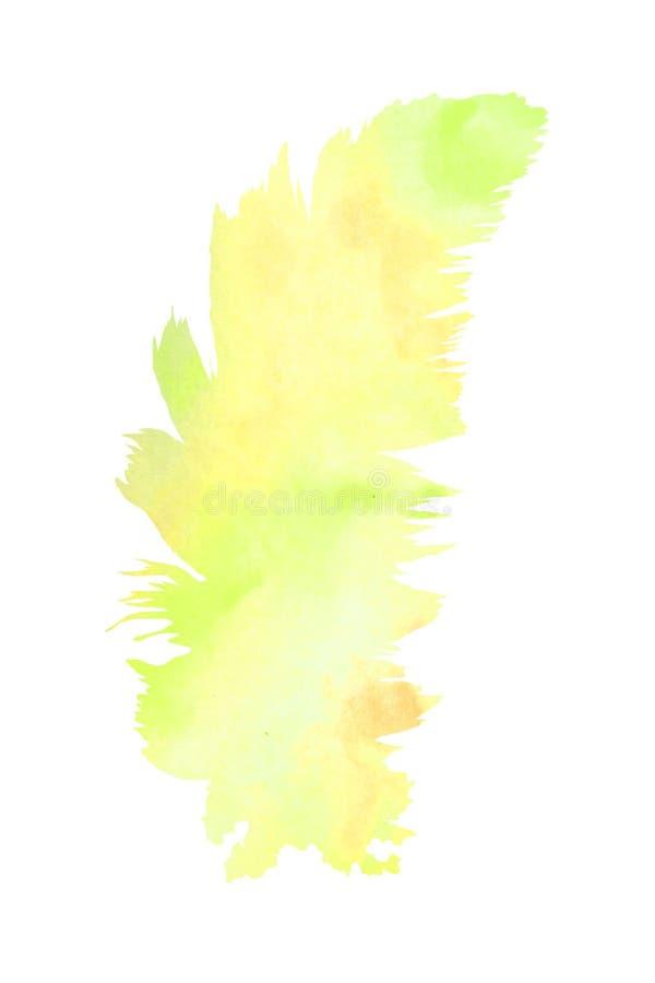 r 一根软的羽毛填装了水彩背景 皇族释放例证