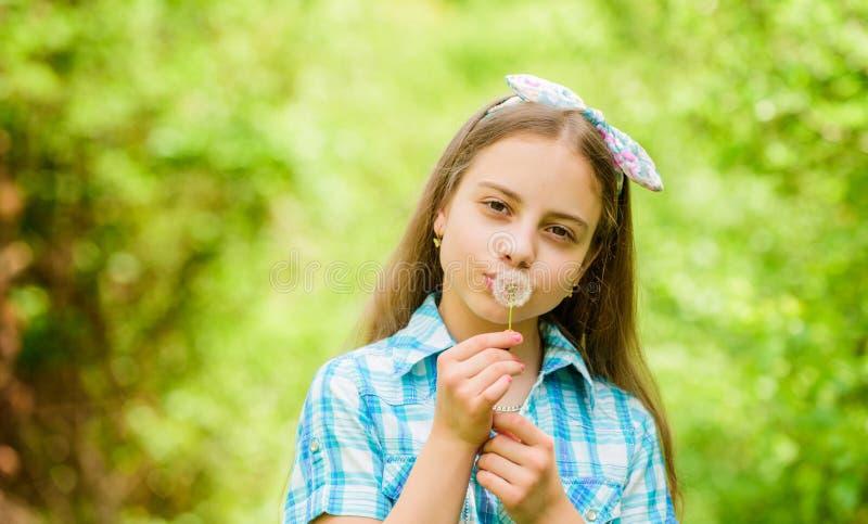 r 做愿望和吹蒲公英自然背景的女孩土气样式 人们为什么在蒲公英祝愿 免版税库存照片