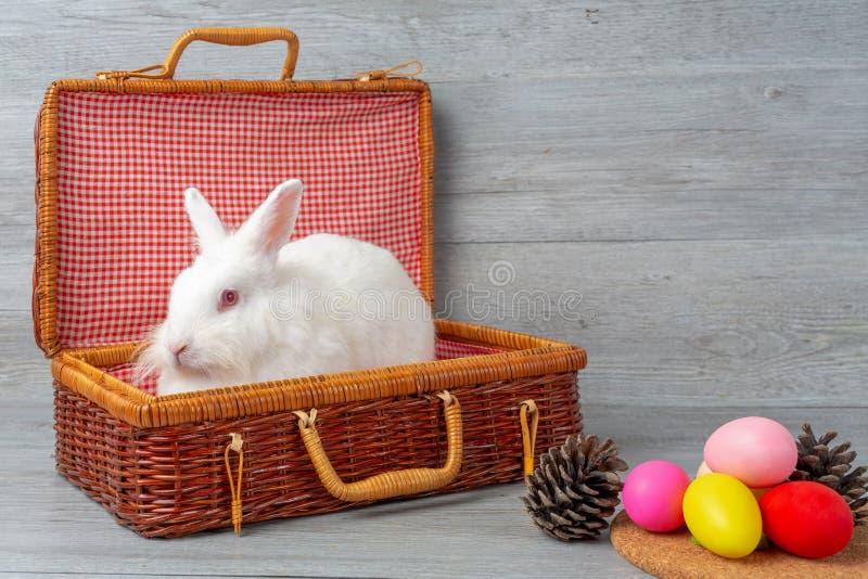 r 兔子用在一个木篮子的鸡蛋 在木背景的逗人喜爱的复活节兔子兔子 免版税图库摄影