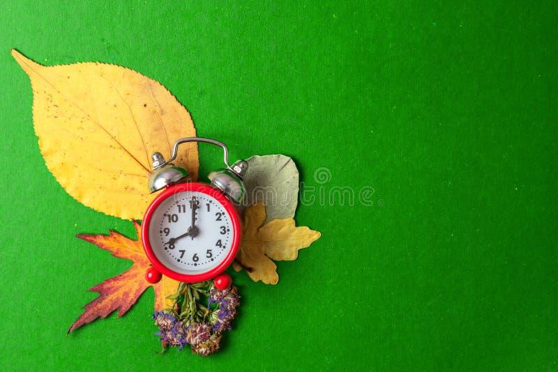 r 在干燥秋叶背景的老闹钟  r 免版税库存照片