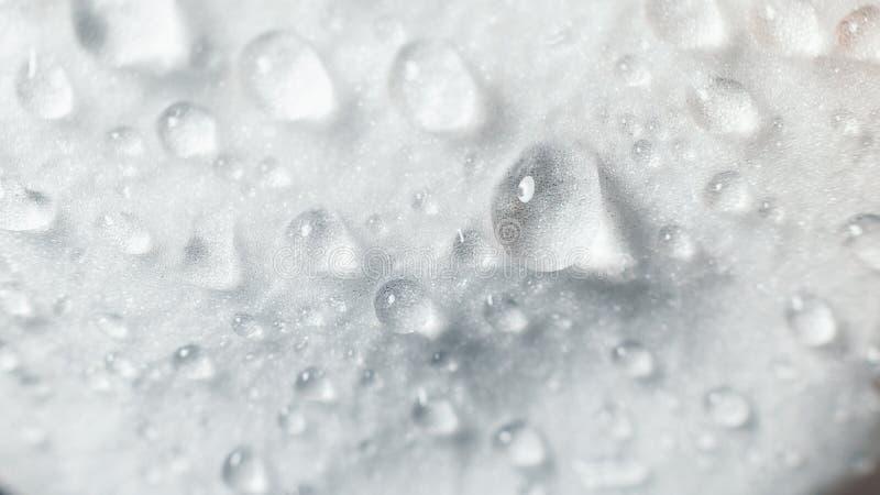 r 在白色兰花花宏指令的大美好的水下落 抽象自然纹理宏观看法  免版税库存照片