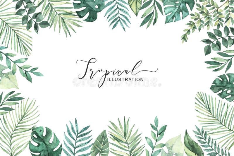 r 夏天热带框架 热带棕榈叶monstera,槟榔树,爱好者,香蕉 为婚姻完善 库存例证