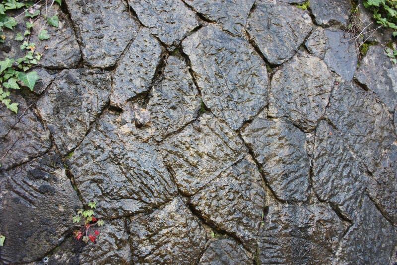 r 大理石,石或者黑暗的石湿神色 jugla、森林或者纪念碑 湿结构,古老建筑 库存图片